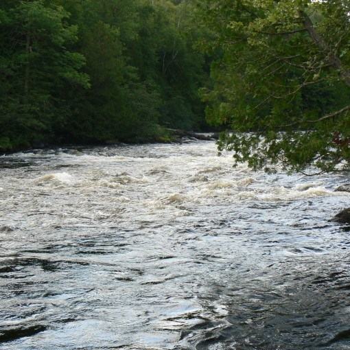 Dumoine River and its quality water